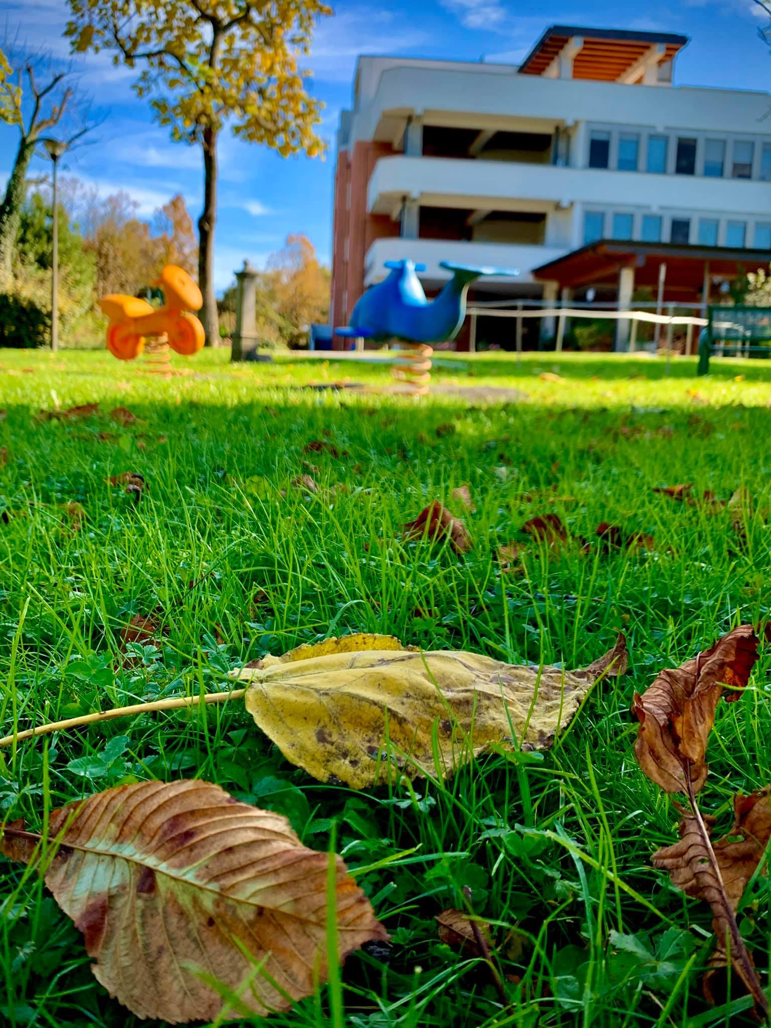 L'autunno è una seconda primavera 🍂🍁